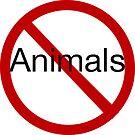 No Animals by Chris Curnow