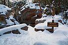 Winter Twilight at Midway Crevasse by Gene Walls