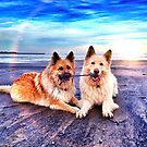 Beach Buddies by Kobianddillon
