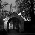 View From The Garden - Canterbury Cathedral B&W by rsangsterkelly