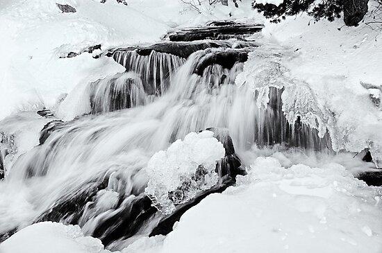 Winter Snow Melt by Jeffrey  Sinnock