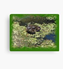 What's Up??? Canvas Print