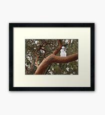 Snowman Climbed Tree Framed Print