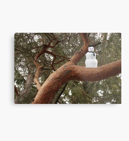 Snowman Climbed Tree Metal Print