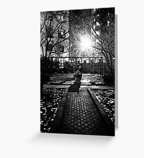 Black and White Parks Greeting Card