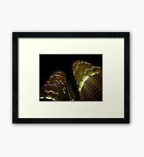 Corn Cobs (2) Framed Print