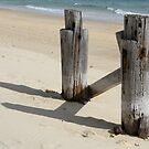 Last of the Tangalooma Whaling Pier by aussiebushstick