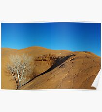 Orange rock hill with white dry tree and shadow Poster