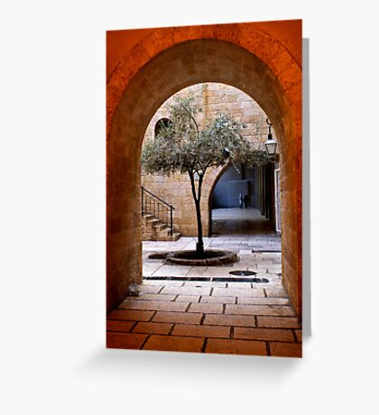 An Olive Tree Grows In Jerusalem Greeting Card