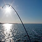Fishing in the Early Morn by Alastair Creswell