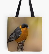 Ok, you can take my picture! Tote Bag