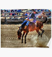 Harvey Dickson's rodeo 2012, Boyup Brook WA Poster