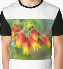 A Blooming Echeveria Graphic T-Shirt