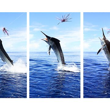 Marlin Canvas or Print - Giant Black Marlin Series by blackmarlinblog