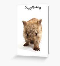 A wombat Happy Birthday 1P Greeting Card