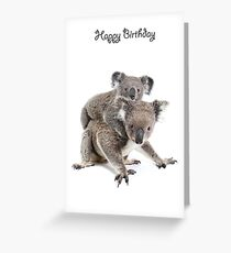 A koala Happy Birthday 2P Greeting Card