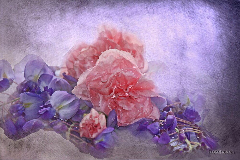 """""""Carnation & Wisteria Dreams"""" by Rosehaven"""