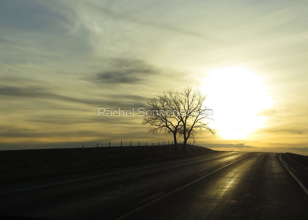 This ones for the road by Rachel Sonnenschein