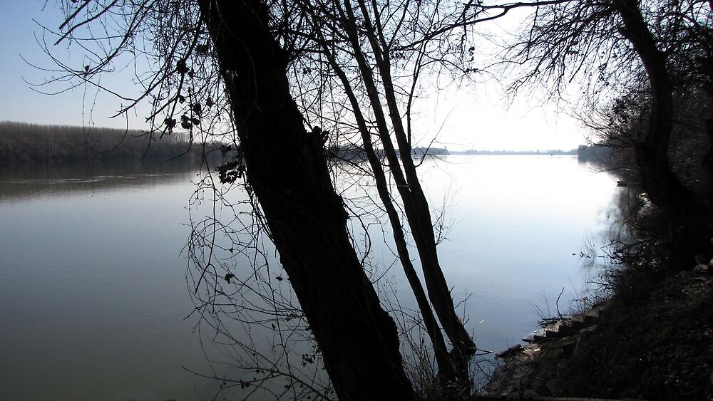 One Winter Day On The River Sava by branko stanic