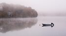 Mist on Loch Faskally, nr Pitlochry, Scotland by Cliff Williams