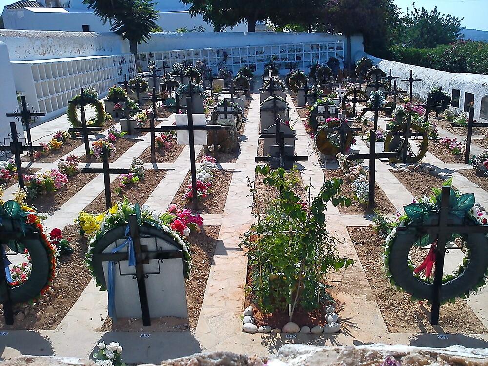 Ibiza Zen Garden by impossiblesong
