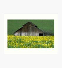 Barn Rural Life Farm Poster, Print & Card Art Print