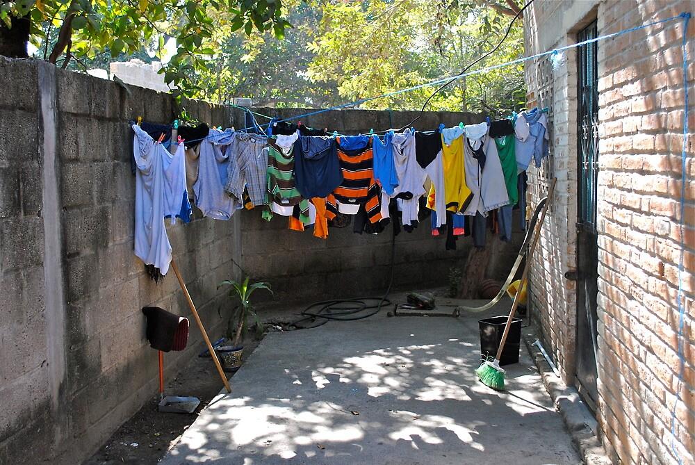 wash day by richard  webb