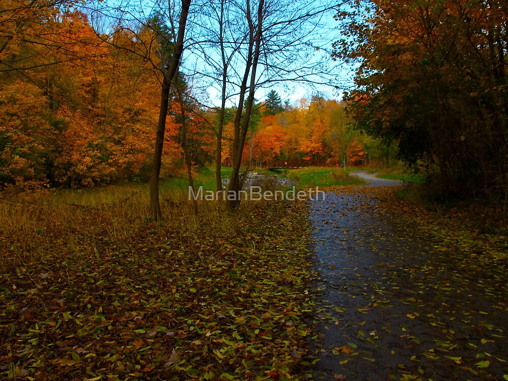Autumn Complexion by MarianBendeth