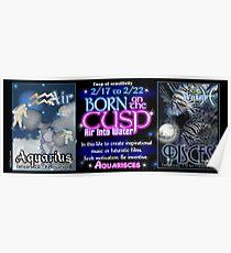 Born on the Cusp Aquarius Pisces Poster