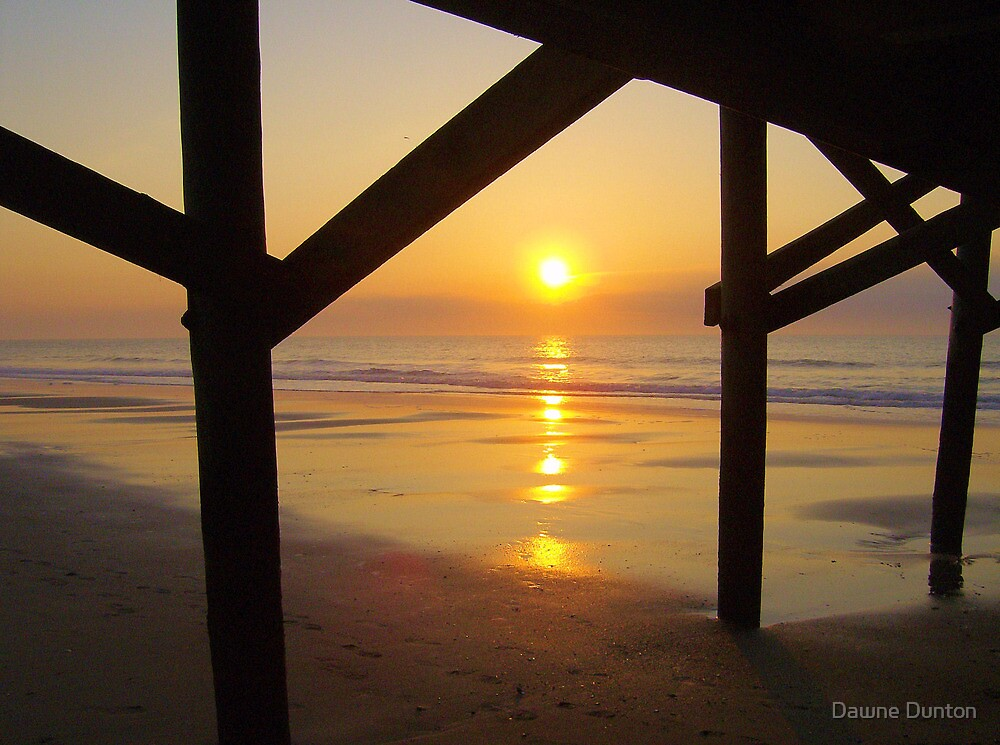 Moments You Wont Forget by ©Dawne M. Dunton