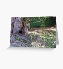 Magpie Three - 31 12 12 Greeting Card