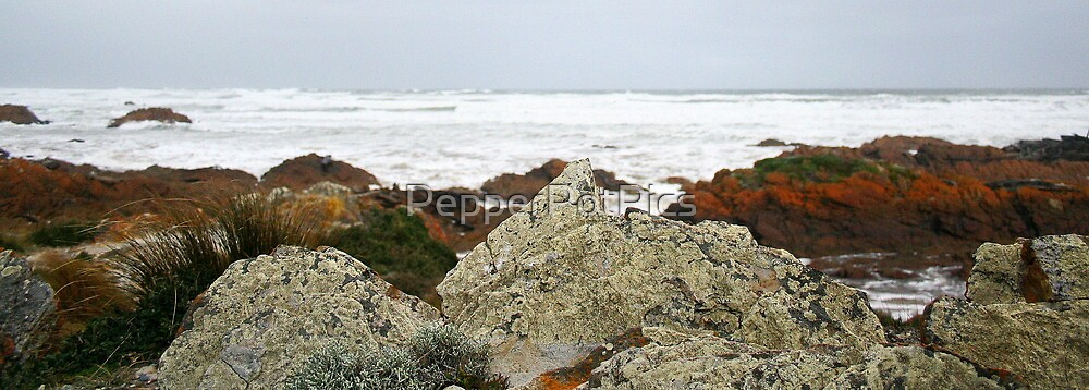 Edge of the World- West Coast, Tasmania by PepperPotPics