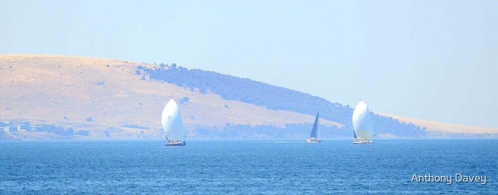 Sunday Sailing by AnthonyDavey