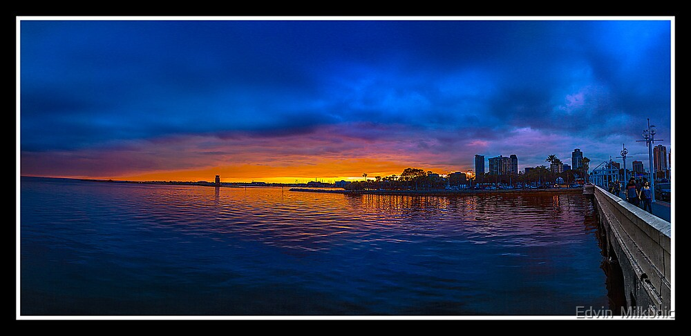Downtown St. Petersburg, Florida by Edvin  Milkunic