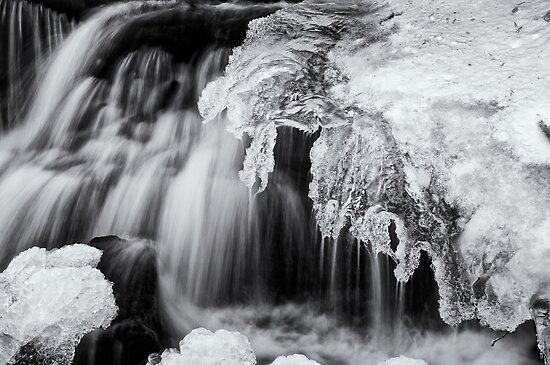 Melt by Jeffrey  Sinnock