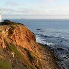 Palos Verdes Coast by mussermd