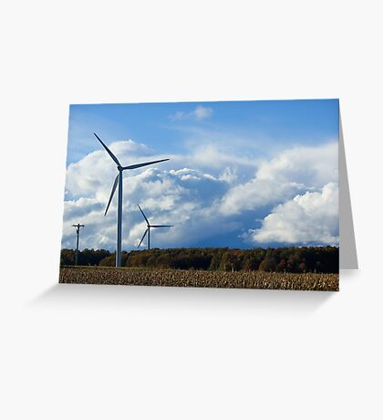 The way the wind blows ....... Greeting Card