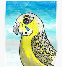 Bindie the Budgie Poster