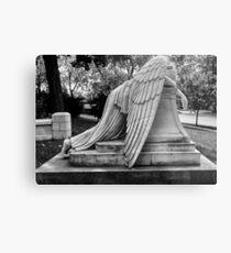 Even Angels Weep Metal Print
