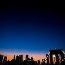 Manhattan Skyline by Patrick T. Power