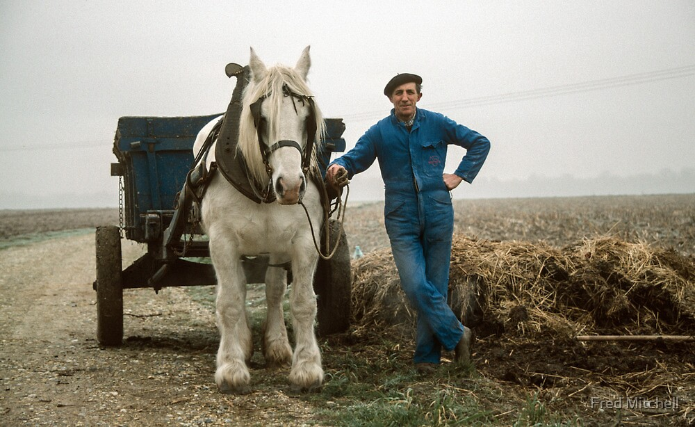Le Titre farmer with horse and cart 19840215 0009 by Fred Mitchell