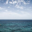 Split point - Aireys Inlet by Gabriel Skoropada