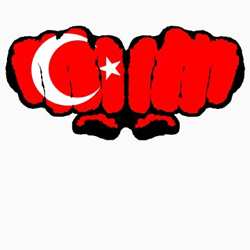 Turkey by duncankm