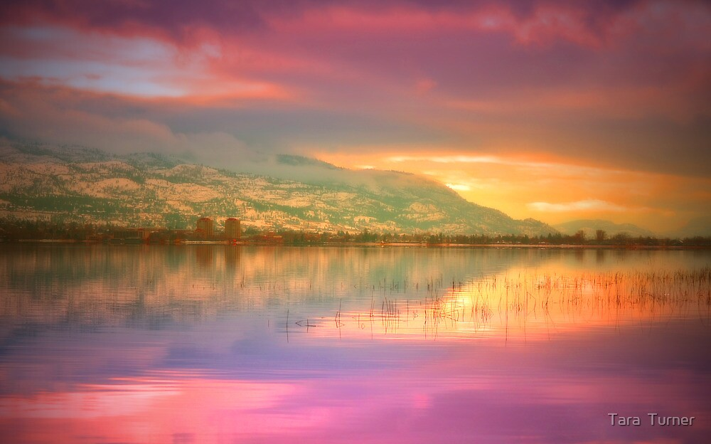 A Rainbow Morning by Tara  Turner
