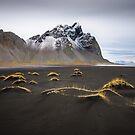 Black Sand Beach, Iceland by Dean Bailey