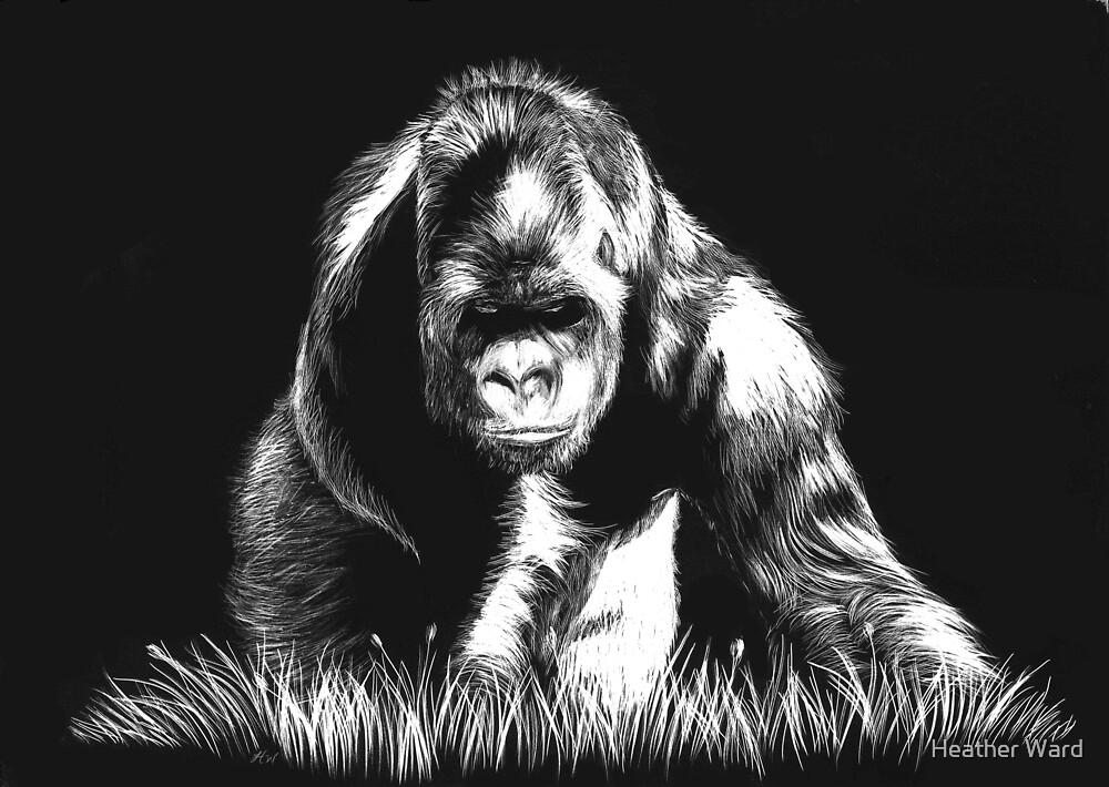 Approach - gorilla by Heather Ward