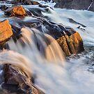 Firsts - Great Falls, VA by Matthew Kocin