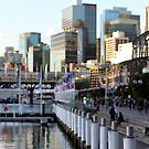 The Notion of Darling Harbour by Timothy John Keegan