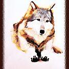 Sitting Wolf by amira