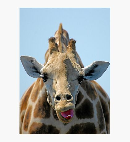 """I Don't Care"" Giraffe Card Photographic Print"